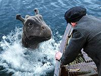 Water Horse: Legend of the Deep