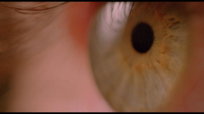 White of the Eye