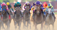 kentucky derby news