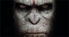 apes 4k news