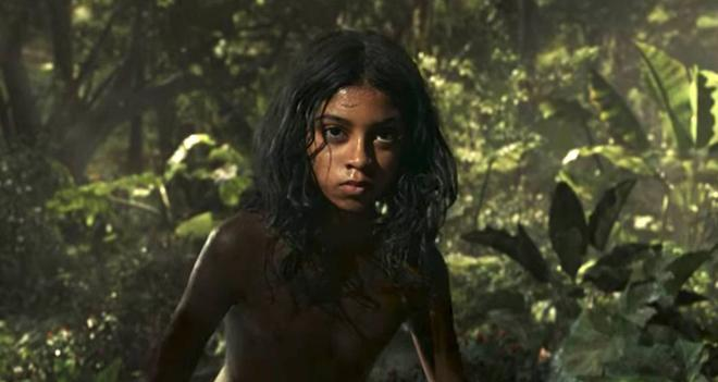 mowgli news
