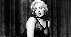 some like it hot news